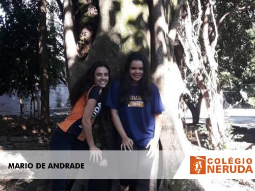 MARIO DE ANDRADE (1)