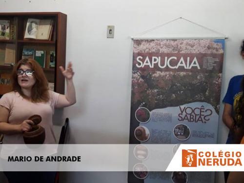 MARIO DE ANDRADE (6)