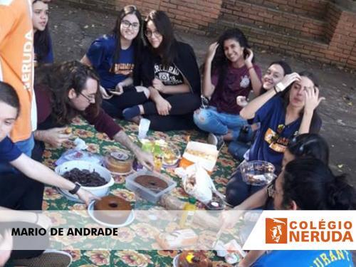 MARIO DE ANDRADE (8)